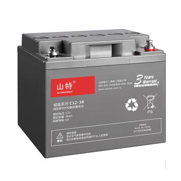 山特蓄电池    C1